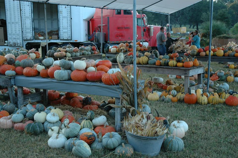 Renningers Farm Buy Fresh, Buy Local