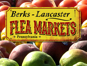 home-berks-lanc-flea