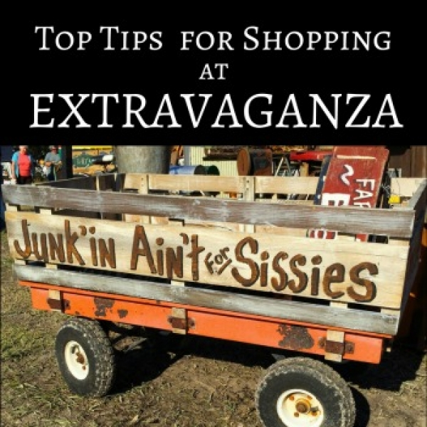 Tips for Shopping at Extravaganza