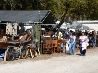 Mt. Dora Extravaganza, November 18th and 19th (Coupon)