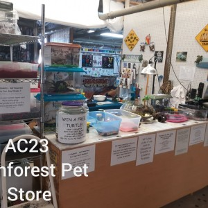 Rainforest Pet Store